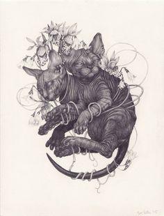Zoe Keller @compassandwheel #cat