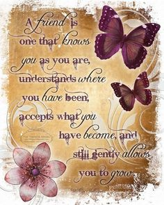 christians and butterflies quotes - Yahoo Image Search Results