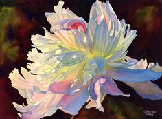 """Shop CathyHillegas Cathy Hillegas Watercolors June Light is a quality fine art giclee print, made from an original watercolor painting of a sunlit peony. The original painting won Best of Show in the Ky Watercolor Society's """"Aquaventure"""" show in 2005."""