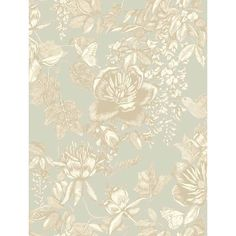 Cole & Son Wallpaper Tivoli Floral Wallpaper (160 AUD) ❤ liked on Polyvore featuring home, home decor, wallpaper, backgrounds, butterfly wallpaper, floral wallpaper, flower pattern wallpaper, hummingbird wallpaper and flower wallpaper