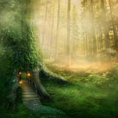 Fantasy Tree House in Forest Photographic Print by egal at Art.com