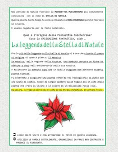 La leggenda | PDF to Flipbook Poinsettia, Education, School, Pdf, Hipsters, Camilla, Christmas, Primary Music, Xmas