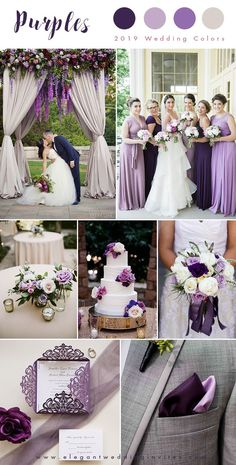 Shades of purple and ivory; an elegant wedding color palette Shades of purple and ivory; an elegant wedding color palette Shades of purple and ivory; an elegant wedding color palette Elegant Wedding Colors, Purple Wedding Themes, Autumn Wedding Colors, Purple Centerpiece Wedding, Wedding Colora, Trendy Wedding, Eggplant Wedding Colors, February Wedding Colors, Lavender Wedding Decorations