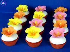 Hawaian cupcakes