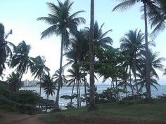 Praia da Concha (Ilhéus-Ba)