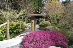Bellevue Botanical Garden - 37 Summery Things to Do in Seattle You Didn't Know Existed