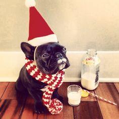 Feliz Navidad!  by martuivancevic http://ift.tt/1cnaxvZ