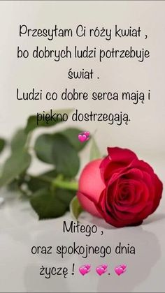 Photos, Humor, Rose, Good Morning, People, Pictures, Pink, Humour, Funny Photos