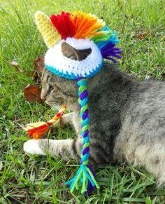 crochet-handmade-hats-pets-iheartneedlework-14__700