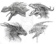 Dragon heads by InvisibleCatfish.deviantart.com on @DeviantArt