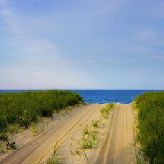The path to the weekend is clear... Happy Friday! ☀️⚓️ #Nantucket #TGIF