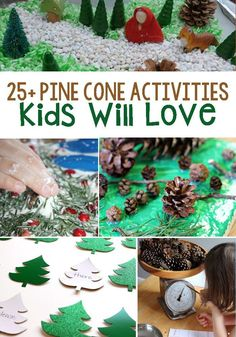Pine Cone Activities for kids! Try these evergreen tree and pine cone themed activities as well as activities to help children learn about pine cones! You will find crafts, math, and more! Try these fun winter activities today! Educational Activities For Kids, Christmas Activities For Kids, Kids Christmas, Learning Activities, Christmas Crafts, Crafts For Kids, Christmas Bingo, Children Crafts, Kindergarten Learning