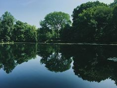@mioaradragan  Nature's Reflections  Pinned by AKT from Instagram.