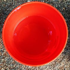 Campers know to keep a bucket of water handy when starting a fire. May we suggest a bright Home Depot orange -- very easy to spot in an emergency! Click through for more outdoor cooking tips!