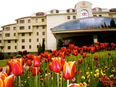 Hotel Kaskady and its suroundings  #luxury #holiday #hotel #kaskady #surroundings #nature
