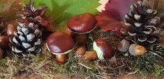 Crafts with chestnuts: porcini mushrooms as decoration DIY - Crafts with chestnuts: porcini mushrooms as decoration DIY - Porcini Mushrooms, Stuffed Mushrooms, Natural Makeup, Pink Purple, About Me Blog, Miniatures, Diy Crafts, Panda, Biscuit