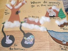 Animals in Winter/ Hibernation. Cute art and song ideas. Scroll down about half way to find lots of activities for hibernation. Kindergarten Science, Science Classroom, Teaching Science, Science Activities, Science Ideas, Preschool Ideas, Preschool Winter, Nature Activities, Elementary Science