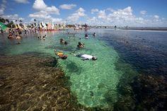 famosa-por-suas-piscinas-naturais-de-aguas-mornas-transparentes-e-cheias-de-peixinhos-porto-de-galinhas-se-tornou-um-dos-principais-destinos-turisticos-de-pernambuco-1374091225058_750x500.jpg (750×500)