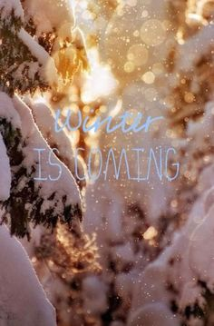 Winter is coming, time for hot drinks, fires, family, cuddling, snow sports, and all sorts of amazingness! YAY