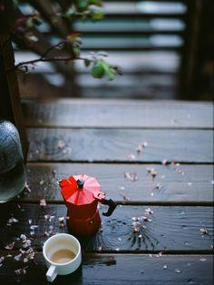 365daysofcoffee:  after the rain. Contax 645   Fuji Provia 100F