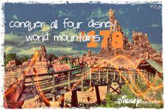 A Disney Bucket List--conquer all four  mountains--
