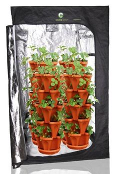 (36) Mr. Stacky Individual Stacking Vertical Gardening Pots - Custom Build Your Own Hydroponics / Aquapoincs / Soil Growing System - Use These Containers To Grow Vegetables, Herbs, Strawberries, Peppers, Lettuce, and Much More - Indoors or Outdoors - Stone Plastic Stackable Planters For Gardening Mr. Stacky,http://www.amazon.com/dp/B00B7NF6N0/ref=cm_sw_r_pi_dp_gzDUsb1FAZFCYZFA