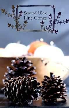 Learn how to make scented wax pine cones for decor and to use as fire starters. A simple way to bring a fresh scent to your home decor. Scented Pinecones, Diy Candles Scented, Scented Wax, Pumpkin Crafts, Fall Crafts, Holiday Crafts, Diy Crafts, Cabin Crafts, Adult Crafts