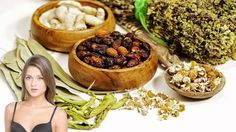 Top 10 Diabetes Herbal Treatments From Around the World