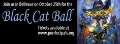 Make your costume count this Halloween when you attend the Black Cat Ball to benefit Purrfect Pals on October 25 at the Meydenbauer Center in Bellevue.