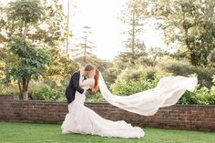 A whimsical wedding with magical golden light, at the Auckland Wintergardens, in the Auckland Domain. Anna, Incredible Gifts, Whimsical Wedding, Walking Down The Aisle, Bridal Portraits, Auckland, Bride Groom, Veil, Hair Makeup