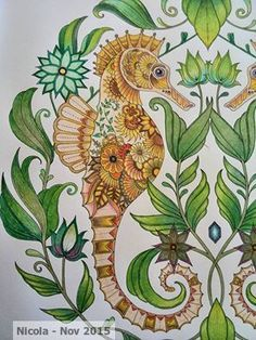 Coloured by me Adult Coloring Pages, Coloring Books, Joanna Basford, Underwater Painting, Johanna Basford Coloring Book, Sketch Inspiration, Doodle Art, Zentangle, Discovery