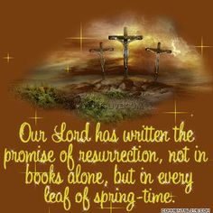 Resurrection Promise picture