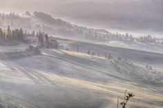 Morning Fog, Siena, Italy