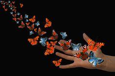 set yourself free! by Ludmila Shumilova on 500px