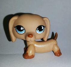 Littlest Pet Shop Brown Dachshund Dog Blue Eyes #518 Preowned LPS in Toys & Hobbies, Preschool Toys & Pretend Play, Littlest Pet Shop | eBay