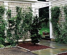 Wall-mount trellises are a simple and cost-effective way to add style to your outdoor decor. Find ideas here about which designs, materials, and styles will work best for your outdoor living areas.