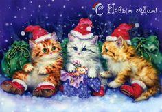 3 chatons de noel