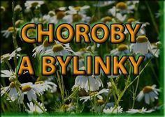 Vyberte si neduh a hledejte bylinky Healing Herbs, Medicinal Herbs, Look Body, Dieta Detox, Edible Flowers, Herbal Tea, Natural Medicine, Natural Cures, Herbal Remedies