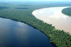 O rio Içá ou rio Putumayo é um dos mais importantes afluentes do rio Amazonas, com a maior parte de seu percurso no estado brasileiro do Amazonas. É paralelo ao rio Japurá.