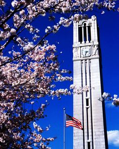 NC State: The Memorial Belltower Picture at NC State Wolfpack Photos