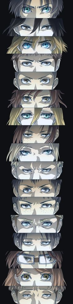 This is everything || Attack On Titan ♜