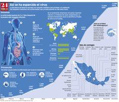 Chikungunya se expande por el país; 28 entidades afectadas, vía 24 Horas