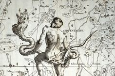 Drawing of Ophiuchus