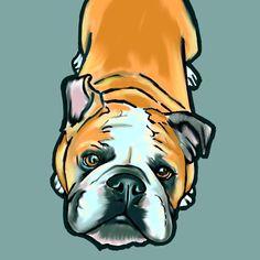 English Bulldog Pop Art Print via Etsy Bulldog Cartoon, Olde English Bulldogge, Watercolor Pictures, Watercolor Animals, Animal Projects, Craft Projects, Bulldog Drawing, Canvas Prints, Art Prints