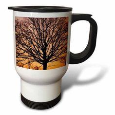 3dRose USA, Missouri. Leafless tree backlit by sunset., Travel Mug, 14oz, Stainless Steel