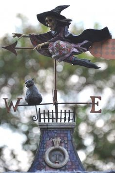 Witchy weather vane...... want!