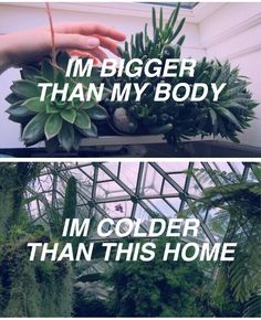 Control / / Halsey I love this songgg