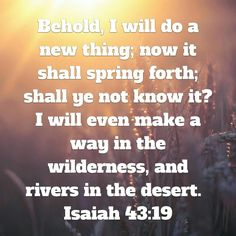 Isaiah 43.19 I'm so glad He made a way for me in the wilderness of #addiction #recovery #freedom #lifeisbeautiful #butGod #JesusChangesEverything