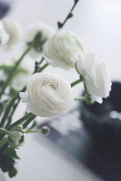 Easter: Scandinavian Simplicity