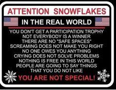 a2ce1b10e Political Topics, Political Views, Democratic Socialist, Democratic Party,  Liberal Snowflakes, Truth